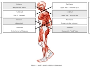 How Does Compensation Cause Injury? Part I: An Introduction to Functional Lesions