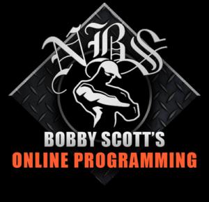Bobby Scott's Online Programming
