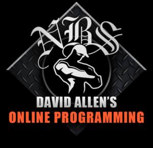 David Allen's Online Programming