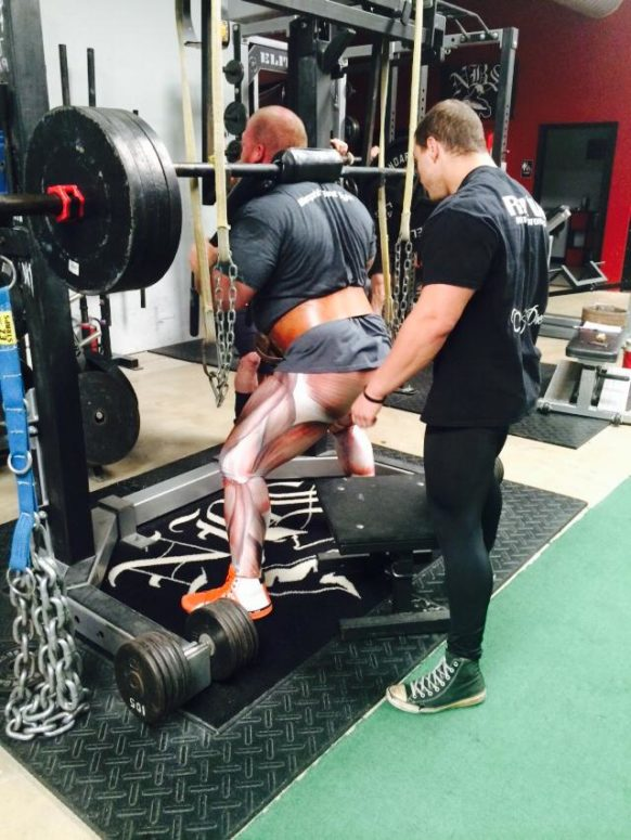 Transitional Elements from Powerlifting To Hypetrophy